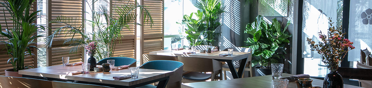 Ресторан Magura Asian Bistro. Москва Пресненская наб., 10, ММДЦ «Москва-Сити», башня «На набережной», башня Б